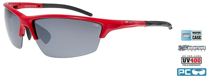 Очки GOGGLE Cheetah E310-3P (red)