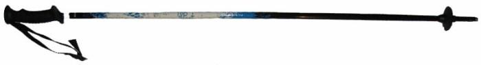 Палки горнолыжные TOPSPORT (blue)